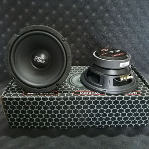 FSD AUDIO MASTER WF 6